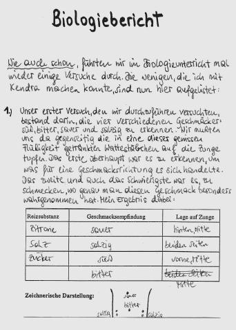 ... :: Niedermair - Zur Pragmatik der Vision einer Schule für all