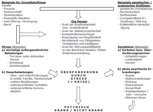 hormonsystem des menschen zusammenfassung