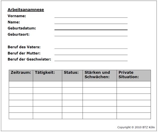 Bidok Bibliothek Bärtschhirschhuber Et Al Job Coaching